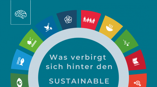 Was sind die: Sustainable Development Goals?