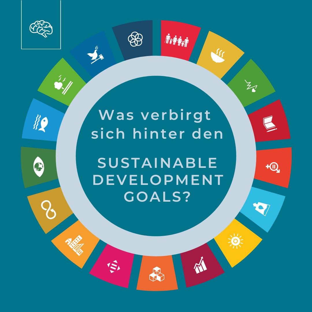 Was sind die: <br>Sustainable Development Goals?